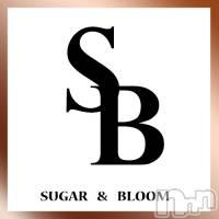 三条デリヘル シュガーアンドブルームの6月13日お店速報「ご予約受付14時開始でございますシュガー&ブルーム」
