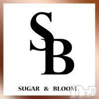 三条デリヘル シュガーアンドブルームの4月19日お店速報「シュガー&ブルームでございます」