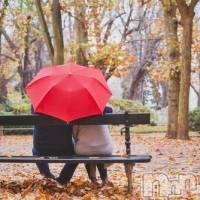 上田人妻デリヘル BIBLE~奥様の性書~(バイブル~オクサマノセイショ~)の9月29日お店速報「雨の日!リアルな不倫!バイブルは12名のラインナップ」
