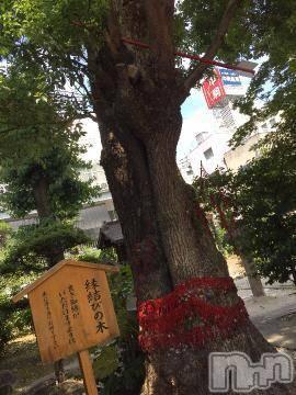 松本デリヘルPrecede(プリシード) せりか(46)の8月10日写メブログ「~ツナゲテイクモノ~」