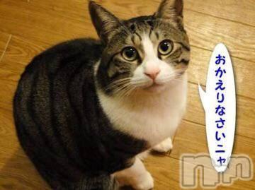 松本デリヘル Precede(プリシード) せりか(46)の8月14日写メブログ「~おかえりなさい~」