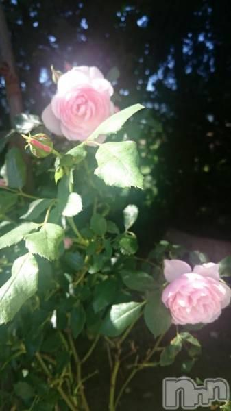 松本デリヘルPrecede(プリシード) あき(45)の6月18日写メブログ「おはようございます(*^^*)」