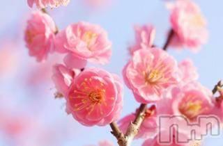 松本デリヘル Precede(プリシード) まこと(42)の2月23日写メブログ「土曜日」