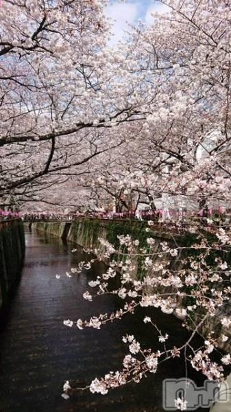 松本デリヘルPrecede(プリシード) まこと(42)の3月29日写メブログ「かすむはる」