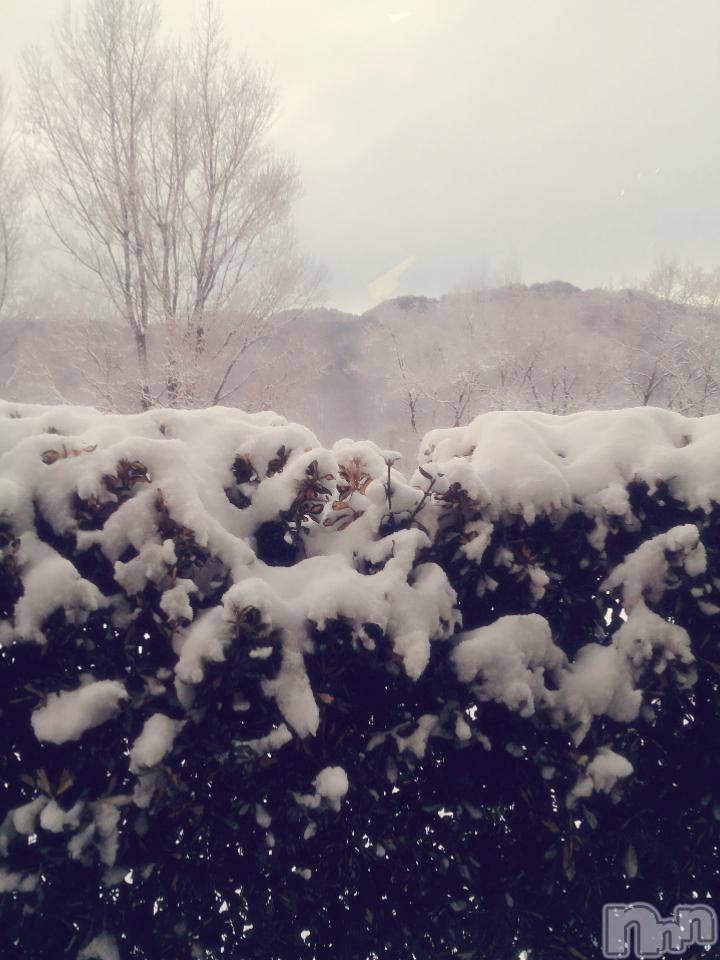 松本デリヘルPrecede(プリシード) あやの(42)の1月17日写メブログ「おはようございます。(^-^)」