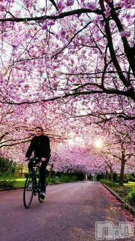 松本デリヘルPrecede(プリシード) あやの(42)の2月16日写メブログ「好きだわ\(^-^)/スタバの桜味」