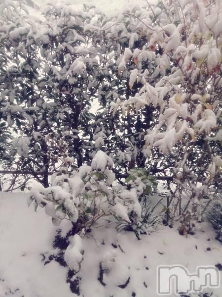 松本デリヘルPrecede(プリシード) あやの(41)の11月24日写メブログ「初雪(*・ω・)ノ」