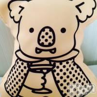 新潟駅前ガールズバーカフェ&バー こもれび(カフェアンドバーコモレビ) せりの5月30日写メブログ「酔ってコアラを拉致ー」