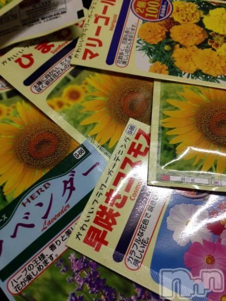 新潟駅前メンズエステoneness(ワンネス) 鈴木 もえの4月13日写メブログ「種まきの季節。」
