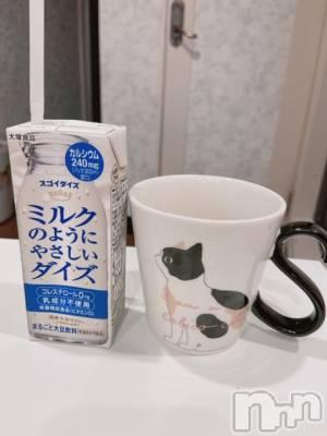 新潟駅前メンズエステoneness(ワンネス) 山野井 つぼみの11月25日写メブログ「好きなんです♪」