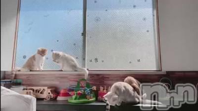 完全個室 完全予約制 心と身体のリラクゼーション★