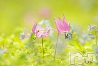 新潟メンズエステParisie-パリジェ-(パリジェ) 女池 ゆずき(34)の2018年5月18日写メブログ「ありがとうございました♡」