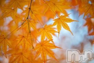 新潟メンズエステParisie-パリジェ-(パリジェ) 女池 ゆずき(34)の2018年10月14日写メブログ「ありがとうございました♡」