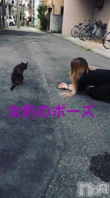 古町ガールズバーカフェ&バー KOKAGE(カフェアンドバーコカゲ) あゆの7月14日写メブログ「女豹」
