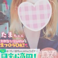 新潟手コキ CECIL新潟店(セシルニイガタテン)の4月22日お店速報「13時とにかく可愛い「たま」ちゃんしゅっきん!生フェラOK!」
