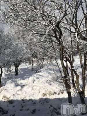 新潟駅前メンズエステoneness(ワンネス) 佐野 かえでの4月1日写メブログ「今朝の雪」