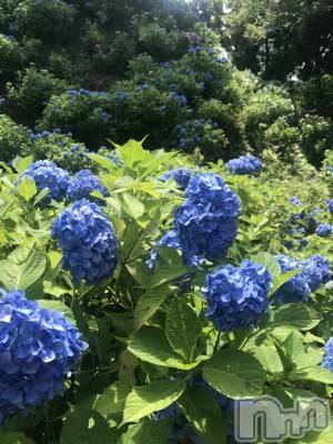 新潟駅前メンズエステoneness(ワンネス) 佐野 かえで(28)の6月25日写メブログ「護摩堂山へハイキング」