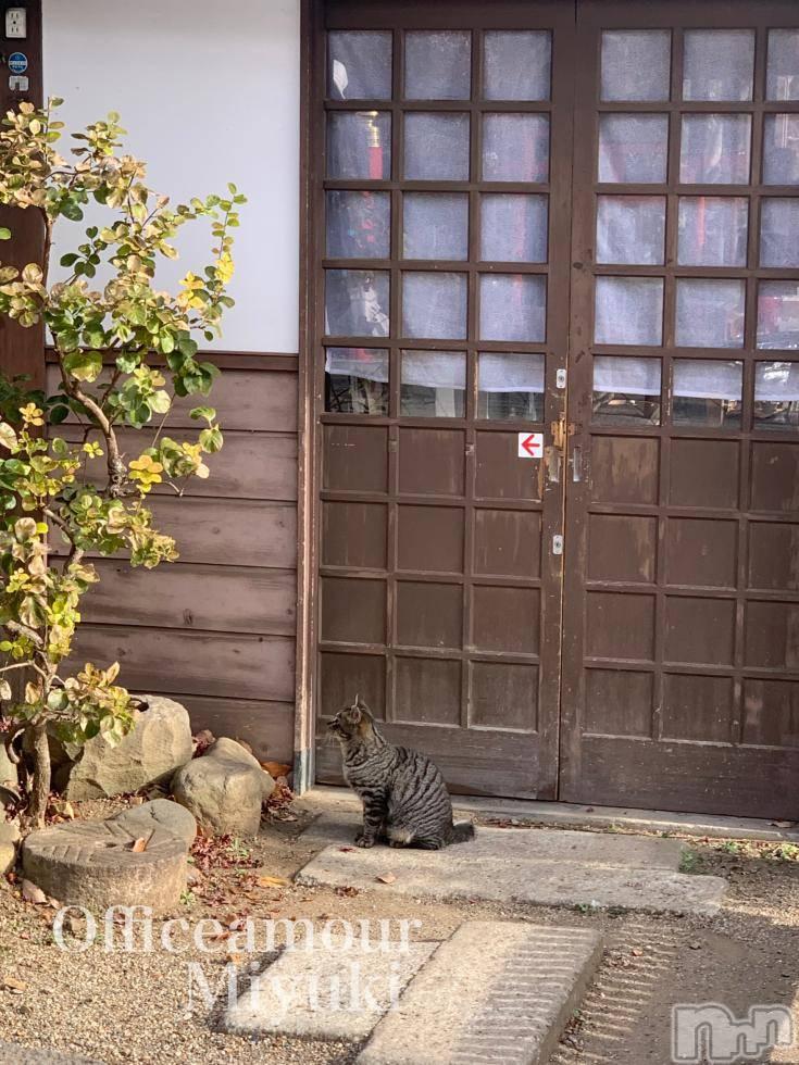 新潟デリヘルOffice Amour(オフィスアムール) 美雪(29)の12月26日写メブログ「にゃあちゃん♡」