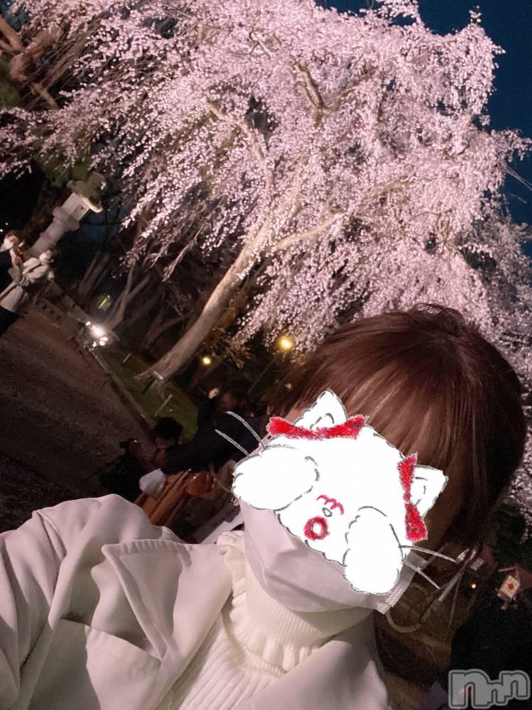 新潟デリヘルOffice Amour(オフィスアムール) 美雪(30)の4月9日写メブログ「高田の桜。破。」