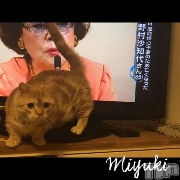 新潟デリヘルOffice Amour(オフィスアムール) 美雪(29)の12月12日写メブログ「♪ね〜こはコタツで丸く」