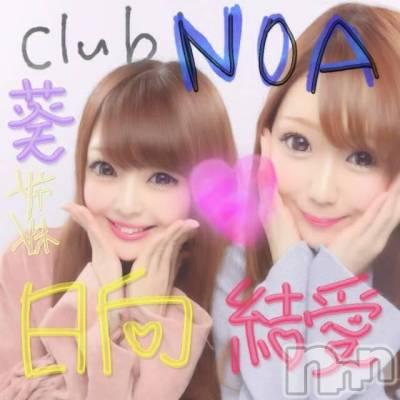 葵 日向(ヒミツ) 身長153cm。新潟駅前キャバクラ Club NOA(クラブノア)在籍。