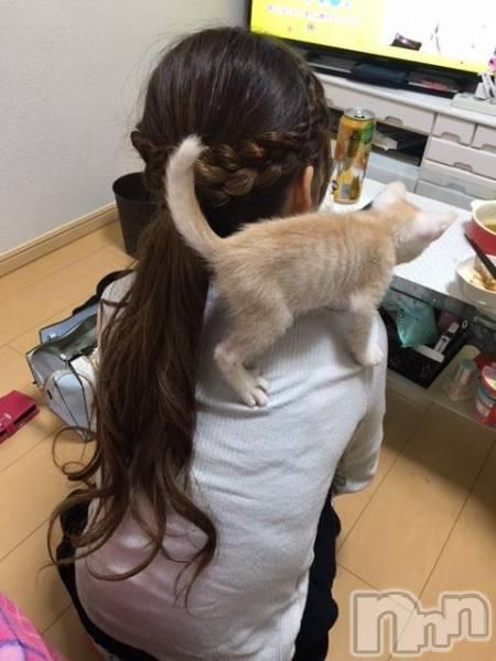 新潟駅前キャバクラClub NOA(クラブノア) 葵 日向の10月13日写メブログ「来ちゃったよ」