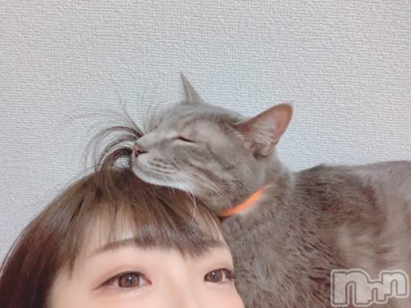 新潟駅前キャバクラClub NOA(クラブノア) 葵 日向の5月23日写メブログ「枕にされる。」