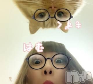 新潟手コキCECIL新潟店(セシルニイガタテン) 双子はむ(21)の12月8日写メブログ「顔出し。」