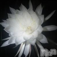 三条デリヘル コスプレ専門店 BLUE MOON(ブルームーン)の9月13日お店速報「僕のブログ」