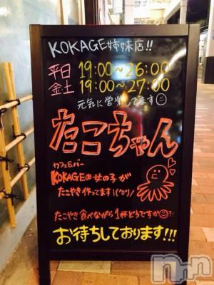 古町居酒屋・バー たこちゃん 古町店(タコチャンフルマチテン)の店舗イメージ枚目