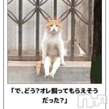 三条デリヘルLady(レディー) くろき(32)の8月4日写メブログ「cute」