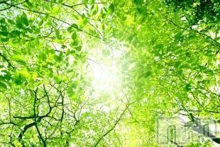 上越メンズエステ上越風俗出張アロママッサージ(ジョウエツフウゾクシュッチョウアロママッサージ) ゆずき★癒しの神(34)の4月24日写メブログ「ありがとうございました♡」