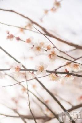 上越エステ派遣上越風俗出張アロママッサージ(ジョウエツフウゾクシュッチョウアロママッサージ) ゆずき★癒しの神(34)の3月16日写メブログ「ありがとうございました♡」