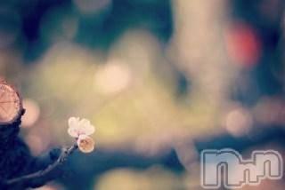 上越エステ派遣上越風俗出張アロママッサージ(ジョウエツフウゾクシュッチョウアロママッサージ) ゆずき★癒しの神(34)の2月15日写メブログ「ありがとうございました♡」