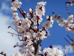 上越エステ派遣上越風俗出張アロママッサージ(ジョウエツフウゾクシュッチョウアロママッサージ) ゆずき★癒しの神(34)の3月15日写メブログ「ありがとうございました♡」