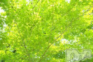 上越エステ派遣上越風俗出張アロママッサージ(ジョウエツフウゾクシュッチョウアロママッサージ) ゆずき★癒しの神(34)の4月20日写メブログ「ありがとうございました♡」