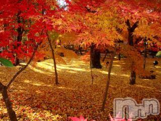 上越メンズエステ上越風俗出張アロママッサージ(ジョウエツフウゾクシュッチョウアロママッサージ) ゆずき★癒しの神(34)の2018年10月14日写メブログ「ありがとうございました♡」