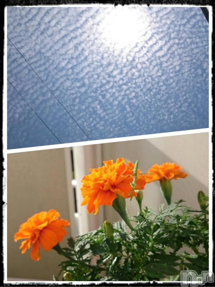 飯田デリヘルFive 飯田店(ファイブイイダテン) ナツキ(32)の7月3日写メブログ「おはようございます☆」