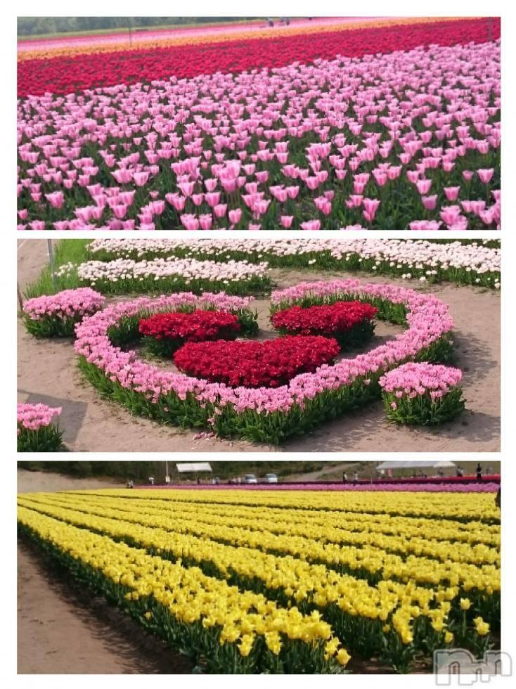 飯田デリヘルFive 飯田店(ファイブイイダテン) ナツキ(32)の5月14日写メブログ「おはようございます」
