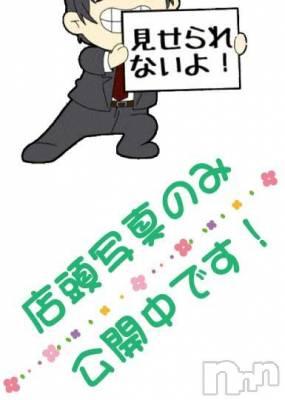 葵(31) 身長159cm、スリーサイズB88(D).W59.H89。新潟ソープ -2nd- PENT在籍。