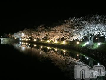 松本デリヘルPrecede(プリシード) つゆき(51)の4月17日写メブログ「『 城下町の桜さま 』」