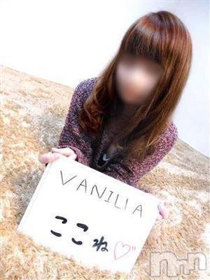 ここね(18)のプロフィール写真1枚目。身長151cm、スリーサイズB82(C).W58.H84。松本デリヘルVANILLA(バニラ)在籍。