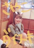 新潟駅前キャバクラClub NOA(クラブノア) 結城リカ(19)の2月19日写メブログ「アンプラの酒乱」