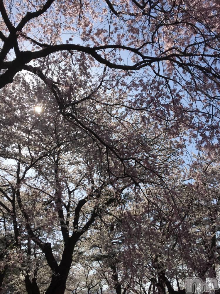 新潟メンズエステ癒々(ユユ) ななせ(26)の4月10日写メブログ「お休みです」
