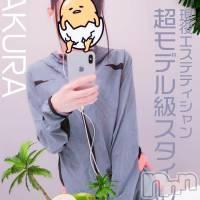 新潟メンズエステ Aroma Dior(アロマディオール)の11月17日お店速報「現役エステティシャン半端ないスタイル!さくらさん(23) 」
