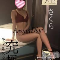 新潟メンズエステ Aroma Dior(アロマディオール)の3月19日お店速報「現役エステティシャン半端ないスタイル!さくらさん(23) 」