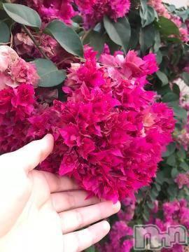 松本デリヘルPrecede(プリシード) むつみ(23)の8月18日写メブログ「パッションピンクの彼女」