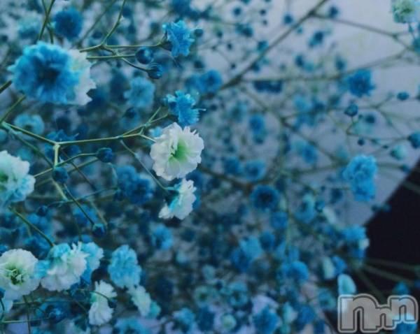松本デリヘルPrecede(プリシード) むつみ(23)の4月14日写メブログ「言い回しの美しさ」