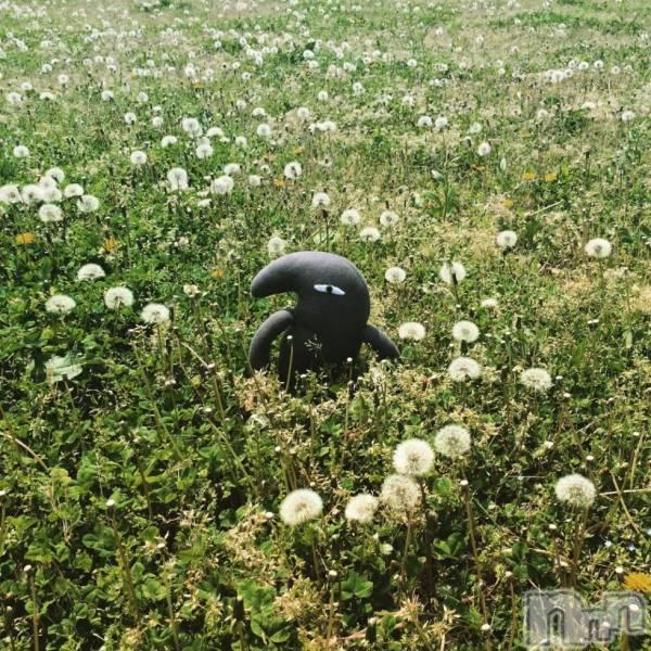 松本デリヘルPrecede(プリシード) むつみ(23)の5月12日写メブログ「ぐっもーにん」