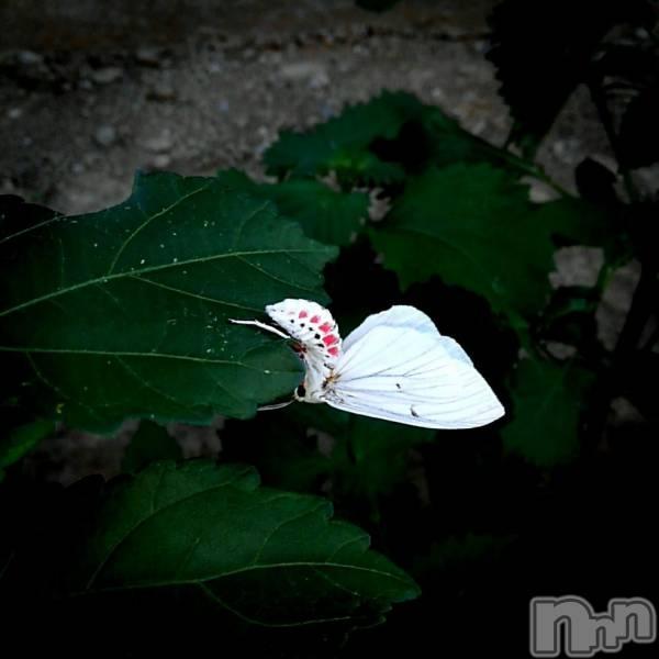 殿町キャバクラELECT(エレクト) 天音-amaneの8月21日写メブログ「お盆休みの最終日!」